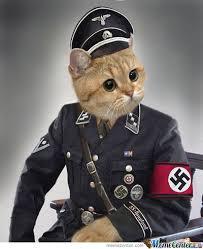 [Image: Filthy+black+cat+scum+orange+and+tan+cat...16964b.jpg]